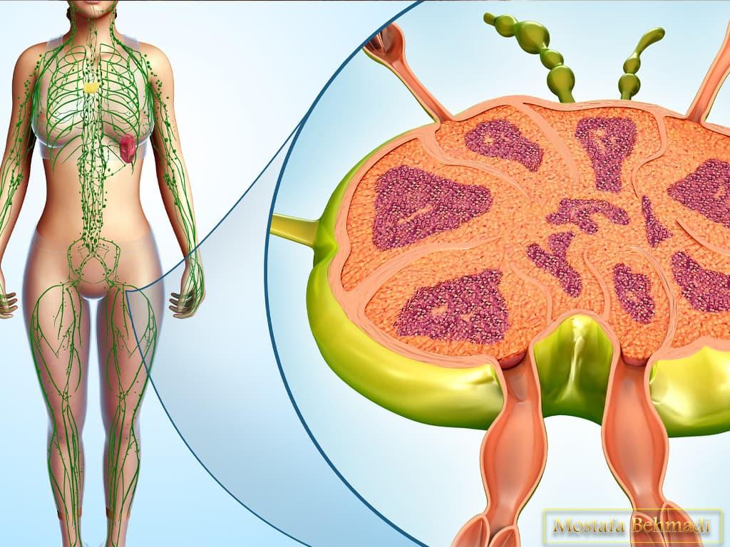 سرطان غدد لنفاوی